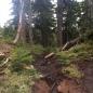 St. Mark's Summit Trail
