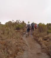 Rongai Route, Mount Kilimanjaro